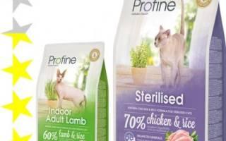Корм для кошек Profine (Профайн) — отзывы и советы ветеринаров