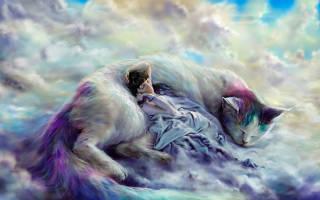 Витамины Астрафарм для кошек: 5 популярных видов, отзывы