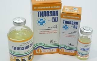 Тилозин 50 и 200: инструкция по применению в ветеринарии для лечения кошек, отзывы, аналоги препарата