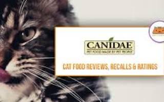 Корм для кошек Canidae — отзывы и советы ветеринаров