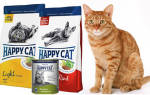 Корм для кошек Happy Cat («Хэппи Кэт»): отзывы ветеринаров и владельцев животных, состав и ассортимент, преимущества и недостатки