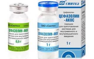 Антибиотики для кошек (уколы, таблетки, суспензии): от чего применяют амоксилонг, цефазолин и другие препараты, отзывы