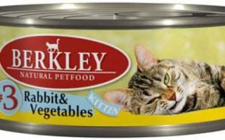 Berkley — корм для кошек, его виды, состав, плюсы и минусы, отзывы о нем ветеринаров и владельцев животных