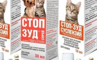 Стоп зуд для кошек (суспензия и спрей): инструкция по применению, отзывы, аналоги