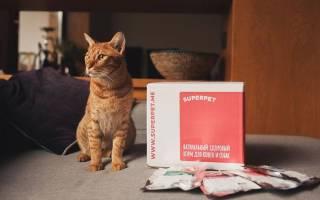 Корм для кошек SuperPet (СуперПет) — в чем особенность и отзывы