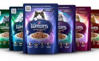 Корм для кошек Шермурр: 3 вида, отзывы, стоит ли давать