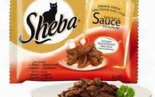 Корм для кошек Шеба (Sheba) — отзывы и советы ветеринаров