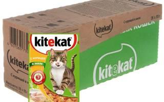 Корм для кошек Китикет (Kitekat) — отзывы и советы ветеринаров