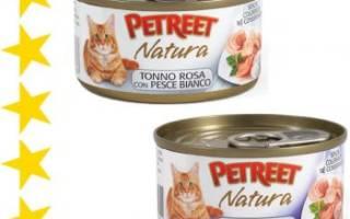 Корм для кошек Petreet (Петрит) — отзывы, состав и советы ветеринаров