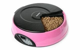 Автоматическая кормушка для кошек, контейнер для сухого корма, миски, дозаторы и иные виды автокормушек и особенности их использования