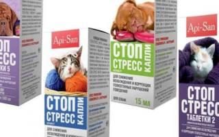 Стоп Стресс для кошек: инструкция по применению, отзывы, аналоги