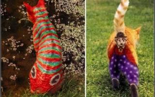 Кошачий бодиарт (20 фото): А вы бы сделали ТАКОЕ вашему любимцу
