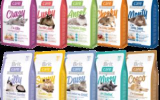 Корм для кошек Брит (Brit) — отзывы и советы ветеринаров